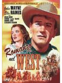 Romanzo Nel West