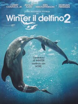 Incredibile Storia Di Winter Il Delfino 2 (L')