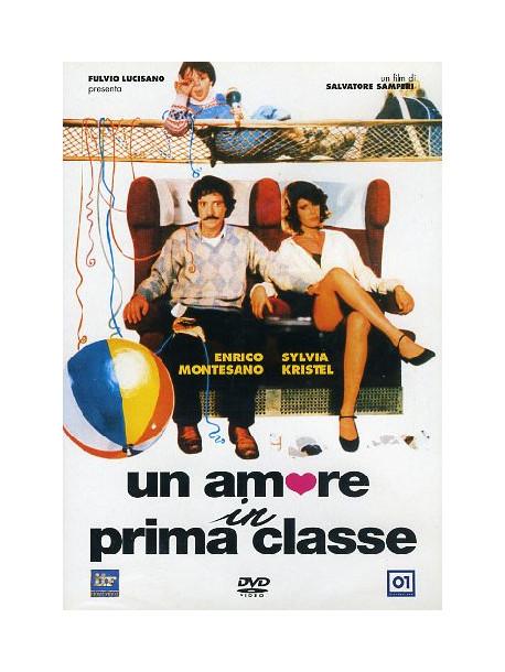 Amore In Prima Classe (Un)