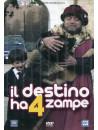 Destino Ha 4 Zampe (Il)