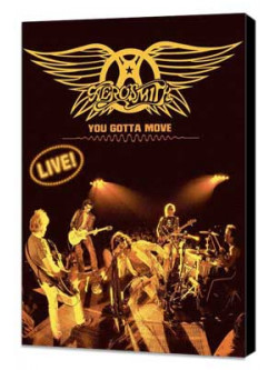 Aerosmith - You Gotta Move Live