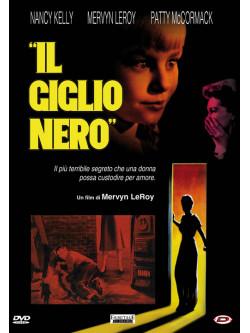 Giglio Nero (Il)
