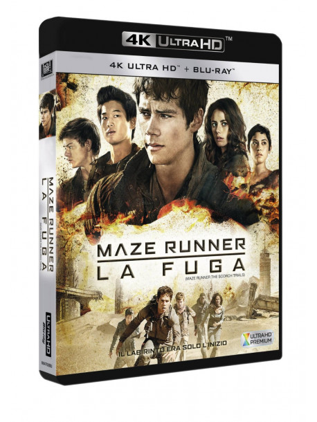 Maze Runner - La Fuga (Blu-Ray 4K Ultra HD+Blu-Ray)