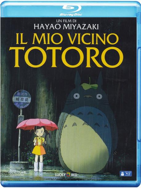 Mio Vicino Totoro (Il)