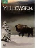 Yellowstone: Tales From The Wild [Edizione: Regno Unito]