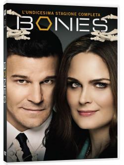 Bones - Stagione 11 (6 Dvd)