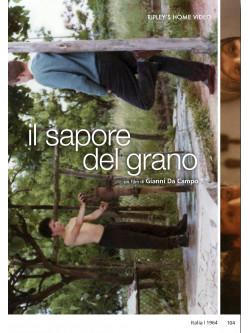 Sapore Del Grano (Il)