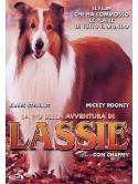 Lassie - La Piu' Bella Avventura Di Lassie