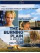 Burning Plain (The)