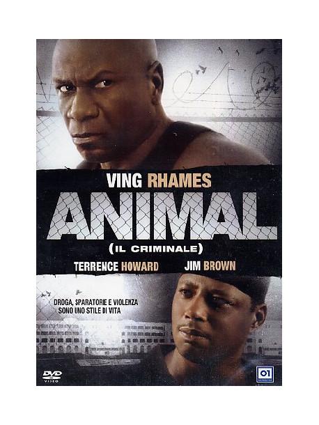 Animal - Il Criminale