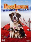 Beethoven A Caccia Di Oss...Car!