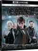 Animali Fantastici - I Crimini Di Grindelwald (Blu-Ray 4K Ultra HD+Blu-Ray)