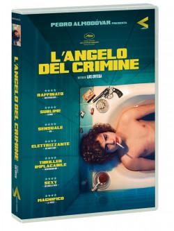 Angelo Del Crimine (L')