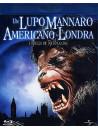 Lupo Mannaro Americano A Londra (Un)