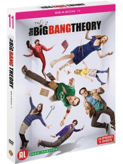 Big Bang Theory Season 11 (2 Dvd) [Edizione: Paesi Bassi]