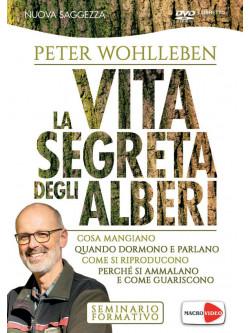 Peter Wohlleben - La Vita Segreta Degli Alberi (Dvd+Libretto)