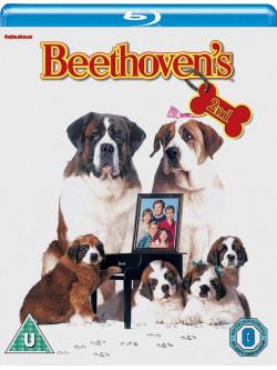 Beethoven'S 2Nd [Edizione: Regno Unito]