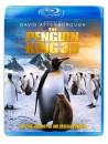 Penguin King 3D (Blu-Ray 3D + Blu Ray) [Edizione: Regno Unito]