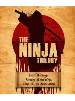 Trilogie Ninja (3 Dvd) [Edizione: Francia]