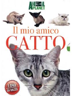 Mio Amico Gatto (Il) (3 Dvd)
