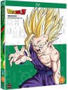 Dragon Ball Z Season 6 [Edizione: Regno Unito]