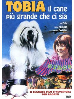 Tobia Il Cane Piu' Grande Che Ci Sia