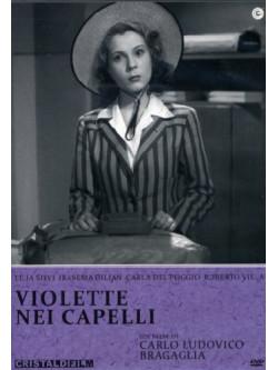 Violette Nei Capelli
