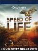 Speed Of Life - La Velocita' Della Vita
