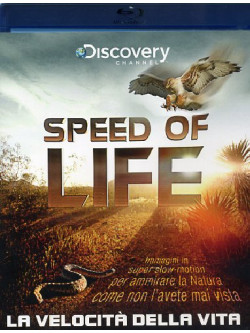 Speed Of Life - La Velocita' Della Vita