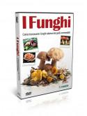 Funghi (I)