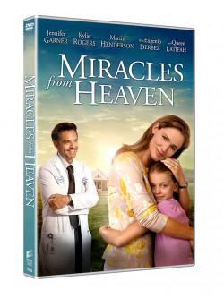 Miracoli Dal Cielo
