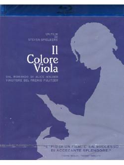 Colore Viola (Il)