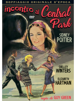 Incontro Al Central Park