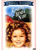 Rondine Senza Nido